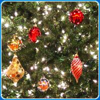 Puhzel's Christmas Puzzles